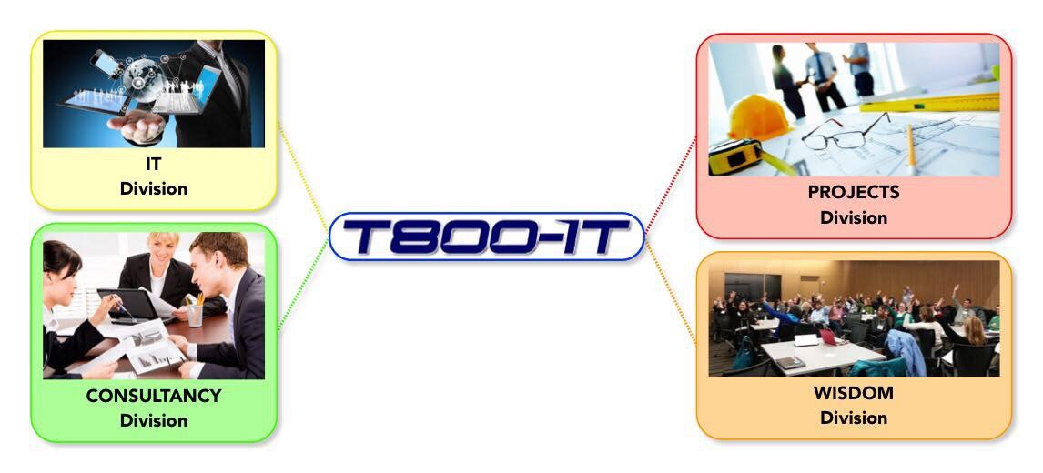 T800-IT Líneas de Negocio: Proyectos, Consultoria, TI y Capacitación