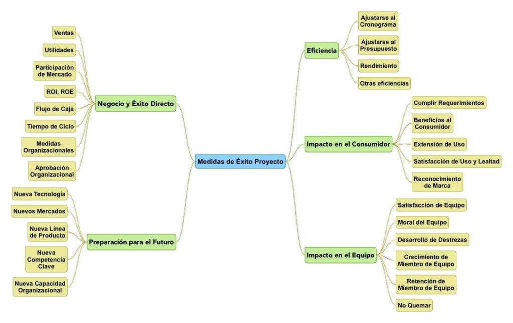 Medidas de Éxito en Proyectos