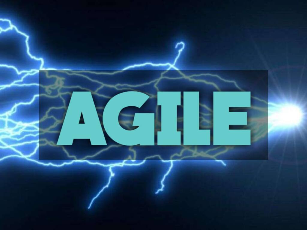 Agile - Project Management Hall of Fame Category