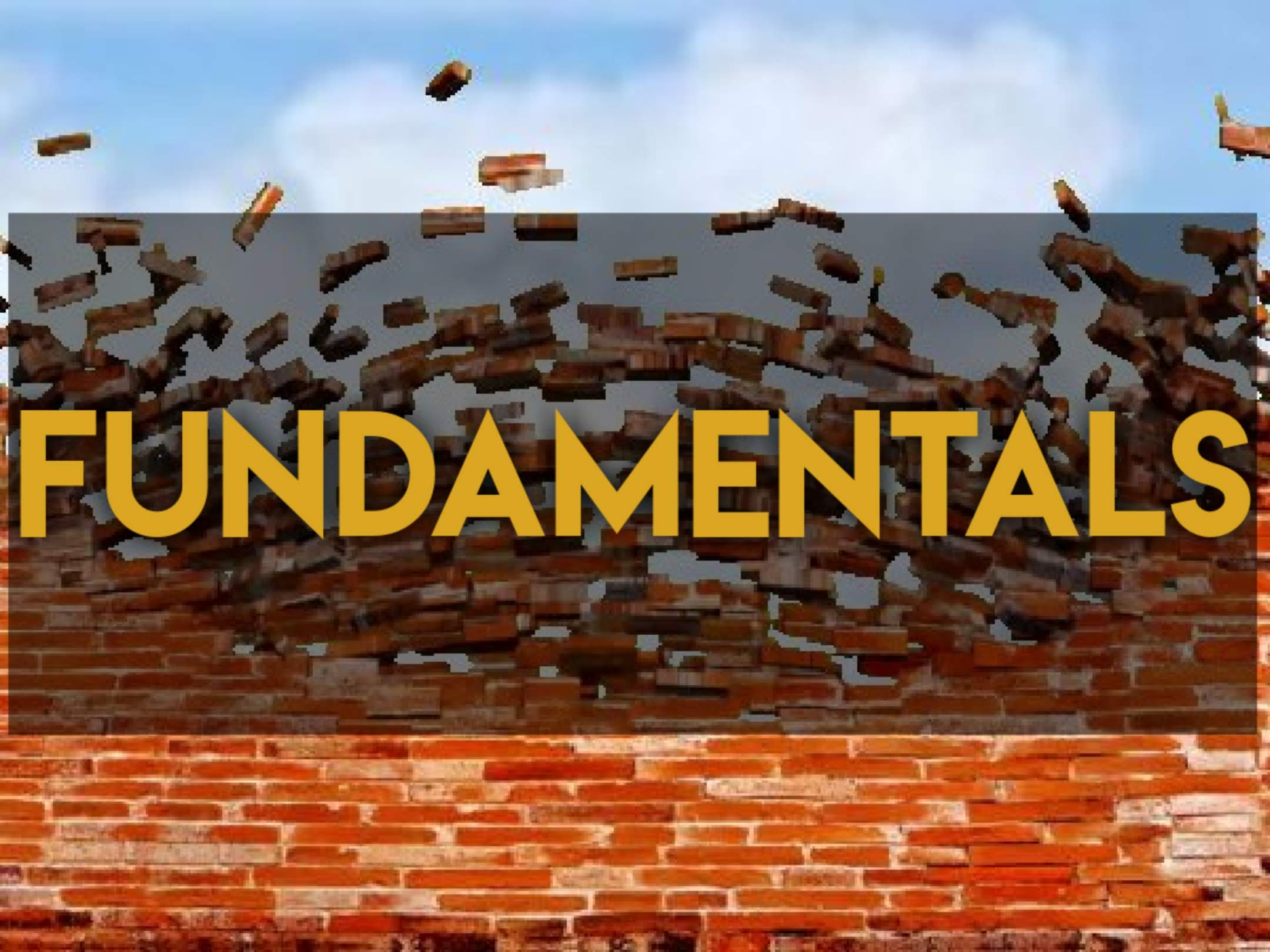Fundamentals - Project Management Hall of Fame Category